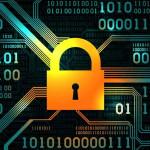 Increased Concerns Around Fraud